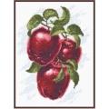 """Набор для вышивания нитками ПАЛИТРА  """"Спелые яблоки"""""""