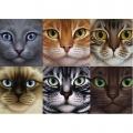 Алмазная вышивка квадратными камнями ГРАННИ «Коты»
