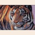 """Набор для вышивания бисером MAGIK CRAFT """"Тигр"""""""
