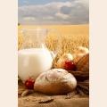 Алмазная вышивка квадратными камнями ГРАННИ «Деревенский завтрак»