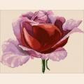 Алмазная вышивка камнями АЛМАЗНАЯ ЖИВОПИСЬ «Роза в алмазах»
