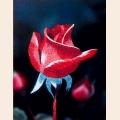 """Набор для вышивания нитками """"РИСУЕМ ИГЛОЙ"""" Мини Люкс """"Розовая прелюдия"""" (10х15 см)"""