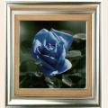 "Набор для рисования камнями DIY ""Синяя роза"""